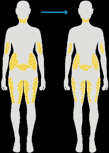 Normale Gewichtsabnahme
